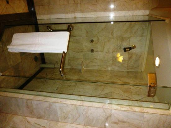 Swissotel Le Concorde: shower