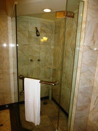 Swissotel Le Concorde Bangkok: shower