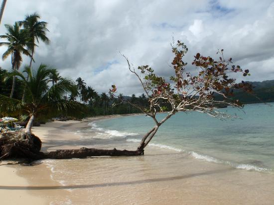 Grand Bahia Principe Cayacoa: Playa Rincon