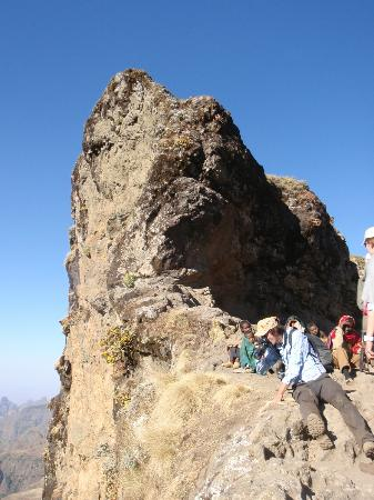Simien Mountains National Park: Still looking for Walia Ibex