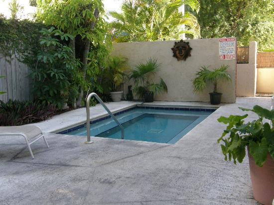 Authors Key West Guesthouse: Pool/Jacuzzi