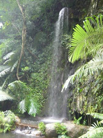The Banjaran Hotsprings Retreat: Waterfall near the Meditation Cave
