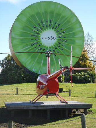 Kiwi360 Te Puke - Aerius Helicopters