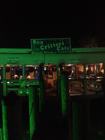Sea Critters Cafe: View from the Docks