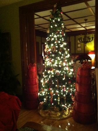 Le Plumard: The lovely christmas tree