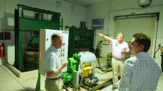 Club Tapiz Hotel: Tour of olive oil production by the manager.
