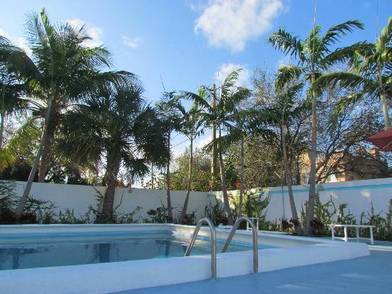 New Yorker Boutique Hotel: the pool area