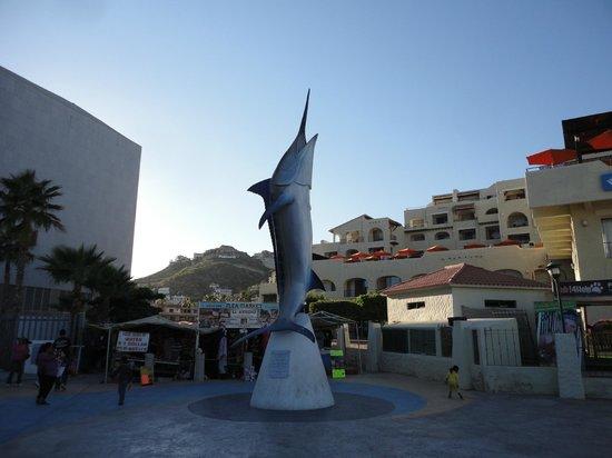 Hilton Los Cabos Beach & Golf Resort : Marina in Cabo San Lucas, marlin fishing available.