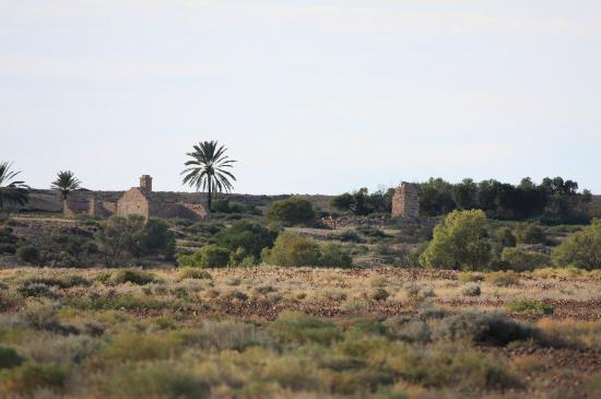 Dalhousie Mound Springs: The Dalhousie homestead ruins