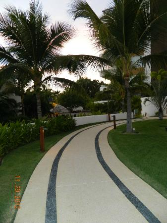 Marival Residences Luxury Resort Nuevo Vallarta: Walkway in garden.
