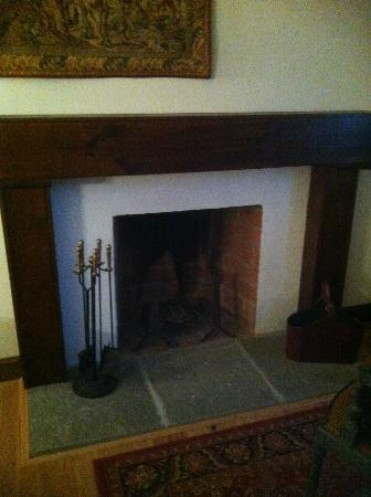 Wedmore Place: Fireplace