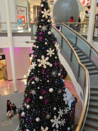 Ocean Terminal: Christmas Tree