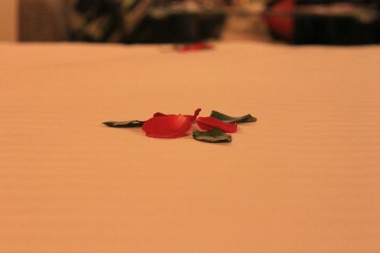 Hanoi Elegance Ruby: Rose petals!