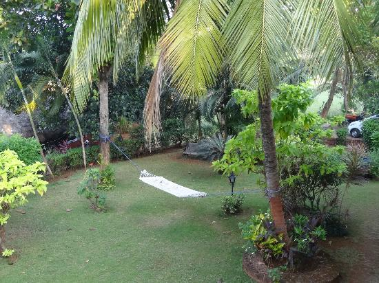 Prakruti Resort - the view from the room