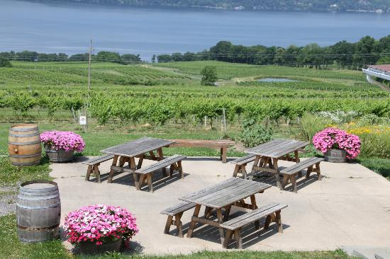 Atwater Estate Vineyards: The intimate patio
