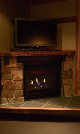 Willows Lodge: Fireplace and Television