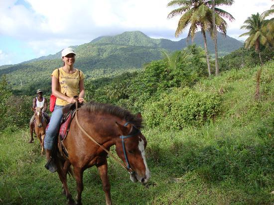 Rainforest Riding: Beautiful ride