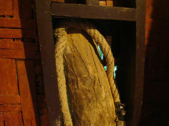 Khao Sok Tree House Resort: Tree goes through the house wall. Can see the forest