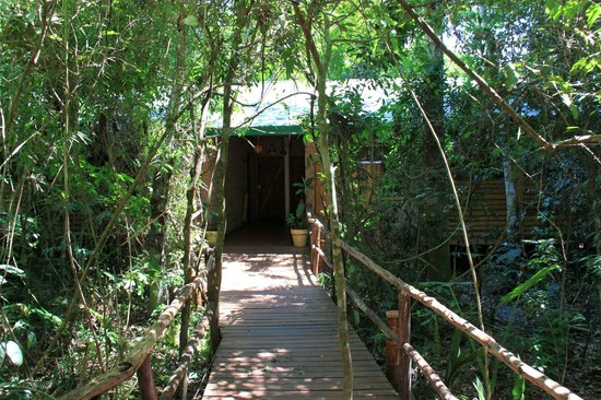 La Aldea de la Selva Lodge: entrance to the cabin (room)