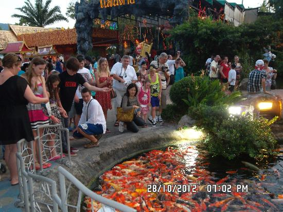 Phuket FantaSea: Visitors busily feeding fishes at the koi pond in front of the main park entrance