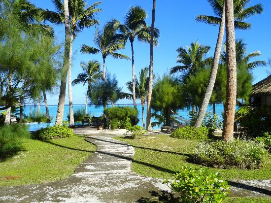 Tamanu Beach: le site