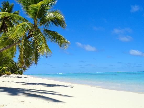 تامانو بيتش: la plage 