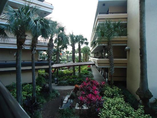 Rosen Inn at Pointe Orlando: Außenansicht Block F