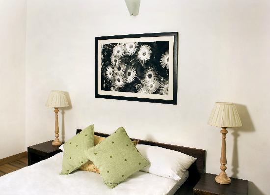 Secludecity - Safdarjung Enclave: Room (Green room)