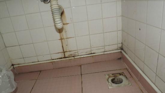 Babil Hotel: douche avec bêtes