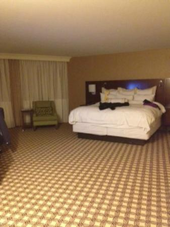 Chicago Marriott Naperville: Cavernous Room 773