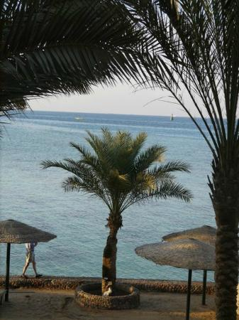 Sunny Days El Palacio Resort & Spa: вид на море