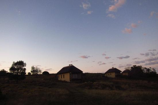 Gondwana Game Reserve: Bush Villas
