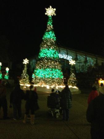 O Tannenbaum - Picture of Busch Gardens Williamsburg, Williamsburg ...
