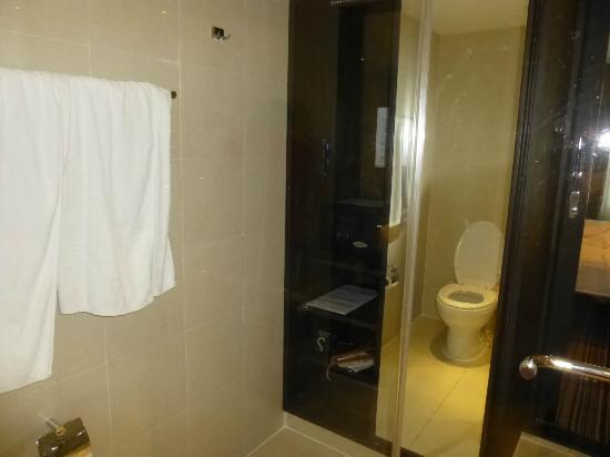 S15 Sukhumvit Hotel: なぜだか、バスルームの中にある、クローゼットセーフティーボックス