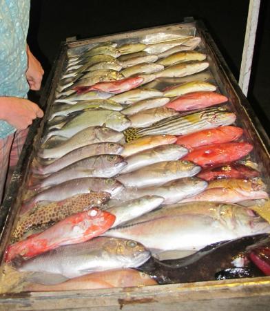 Central Beach Inn: Seafood