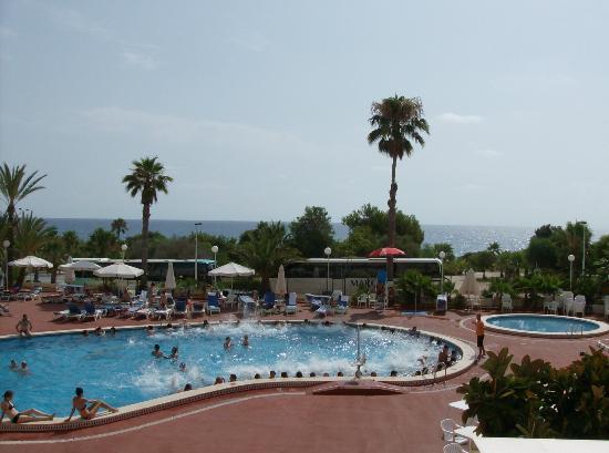 Hotel Playas de Torrevieja: Animación en temporada alta