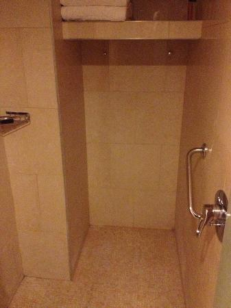 Dan Panorama Jerusalem: huge shower in the bathroom