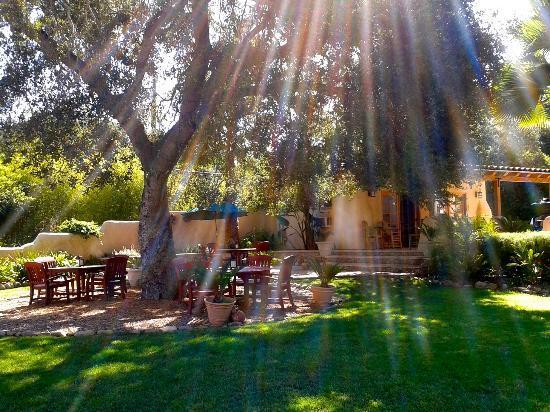 Blue Iguana Inn: Morning sunrays -garden & patio dinning