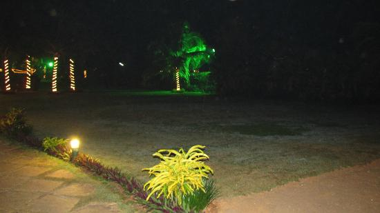Royal Orchid Beach Resort & Spa, Goa: Ambient lighting by night