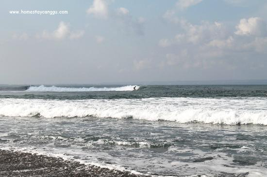 eHomestay Wood Hut Canggu: Surfing at Pererenan beach with 4 surf points in walking distance