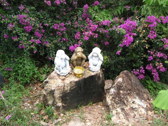 Vena Tours : Ausflug
