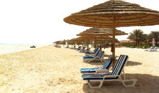 Danat Jebel Dhanna Resort: You can get a tan but the beach is not really good for swimming