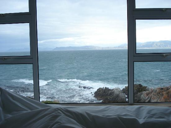 Whalesong Lodge: Sicht in die Bucht aus dem Bett