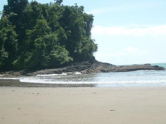 La Cusinga Eco Lodge: The beach nearby