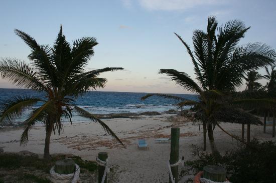 Stella Maris Resort Club: PLAGE