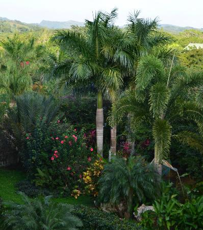 Clarion Suites Roatan at Pineapple Villas: Gorgeous grounds are impeccably groomed