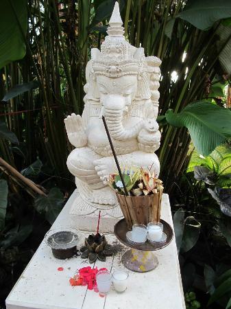 Karangsari Guest House: jardin