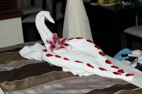 Grand Sirenis Mayan Beach Resort & Spa : towel figurine daily
