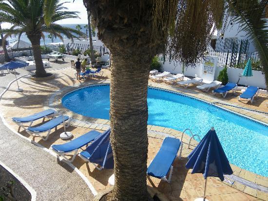 Flamingo Apartamentos : Pool
