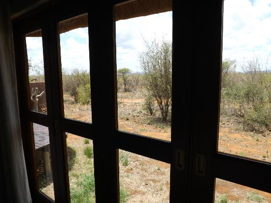 ‪‪Madikwe Safari Lodge‬: View from room‬